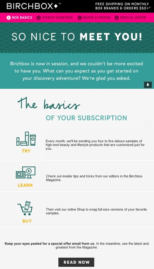 Birchbox welcome email example green and grey background