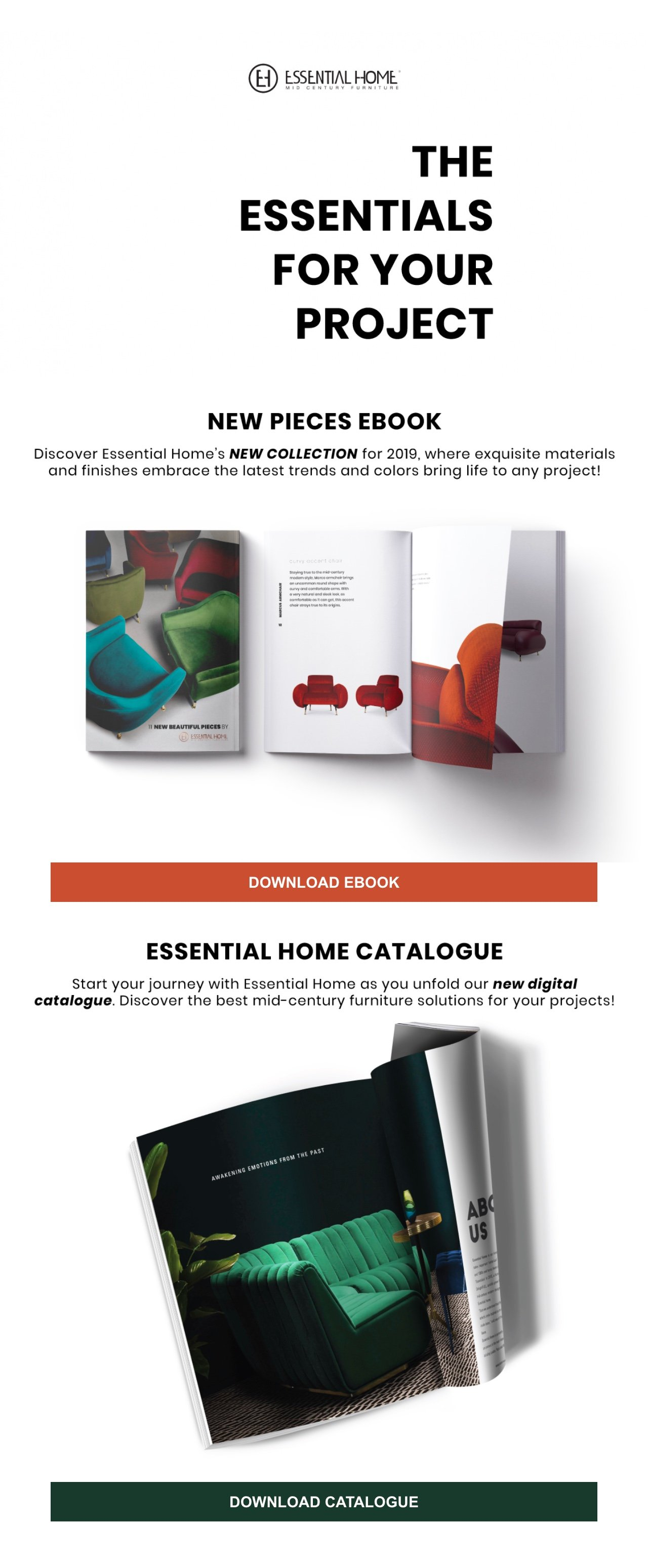 Essential Home newsletter example