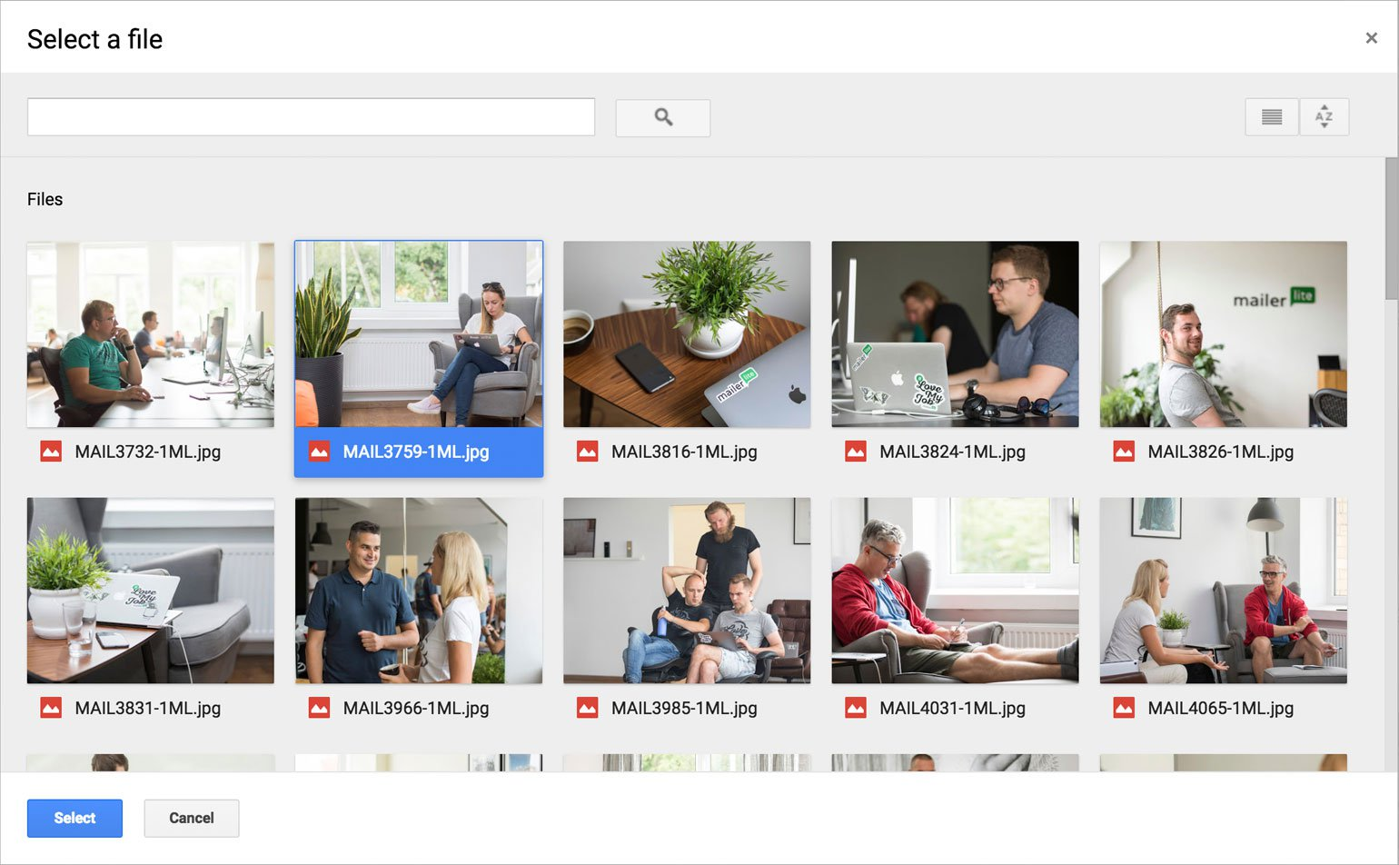 file manager google drive view MailerLite