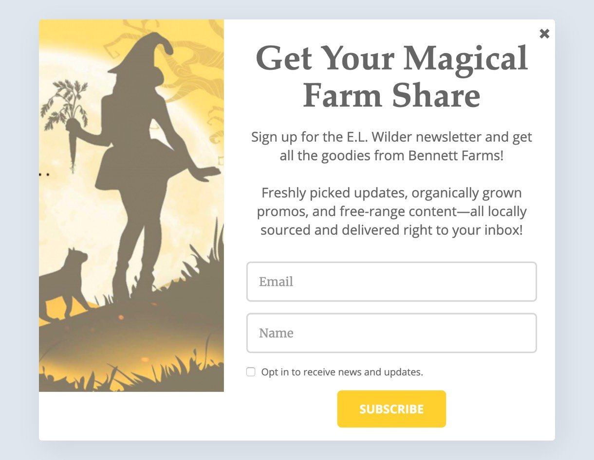 email pop-up example for a book promo - MailerLite