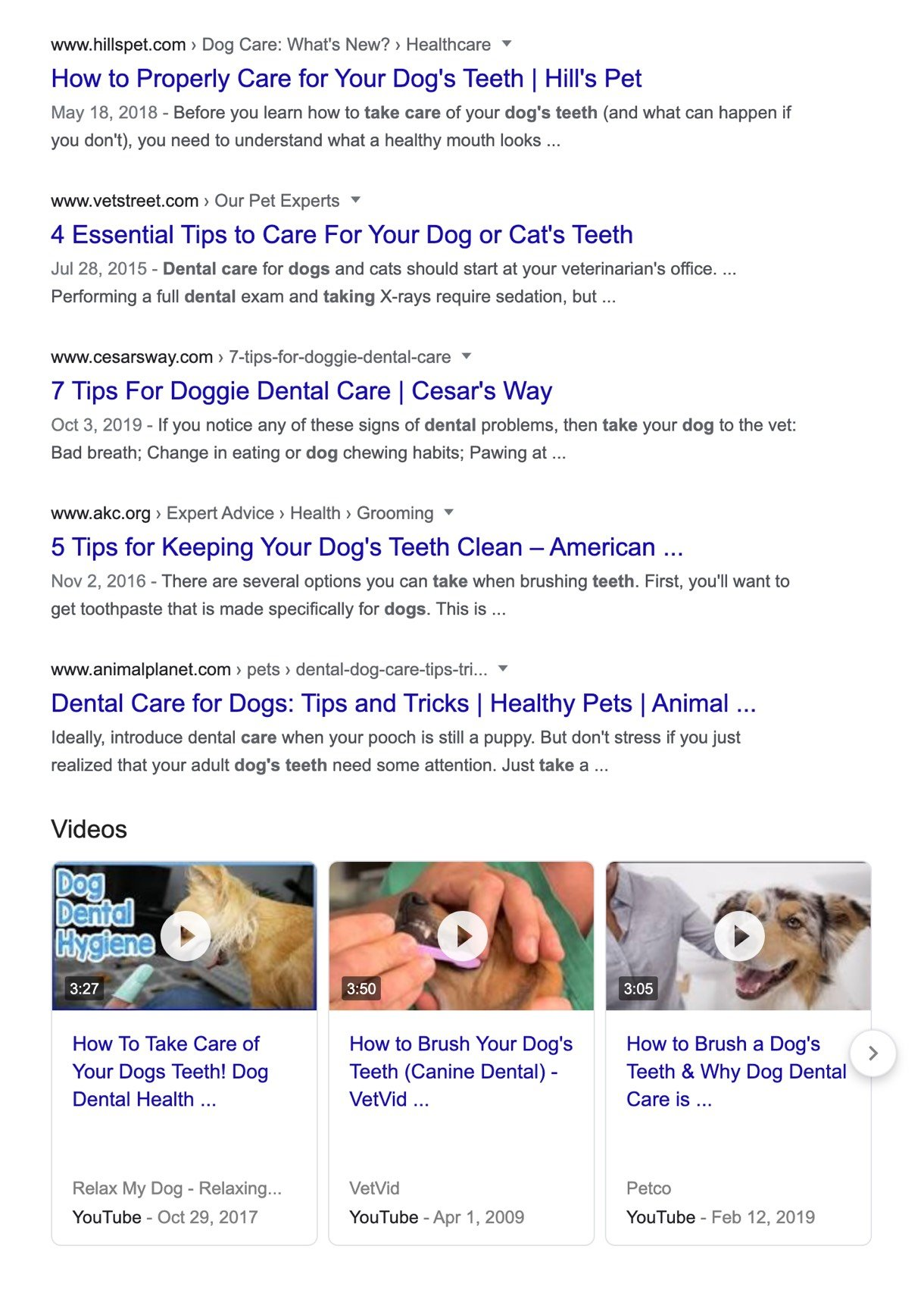 search engine result page example taking care of dogs teeth