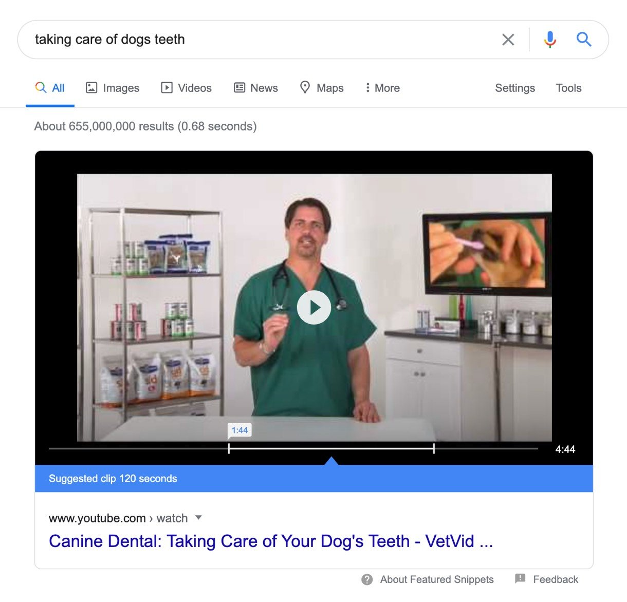 video search result taking care of dogs teeth
