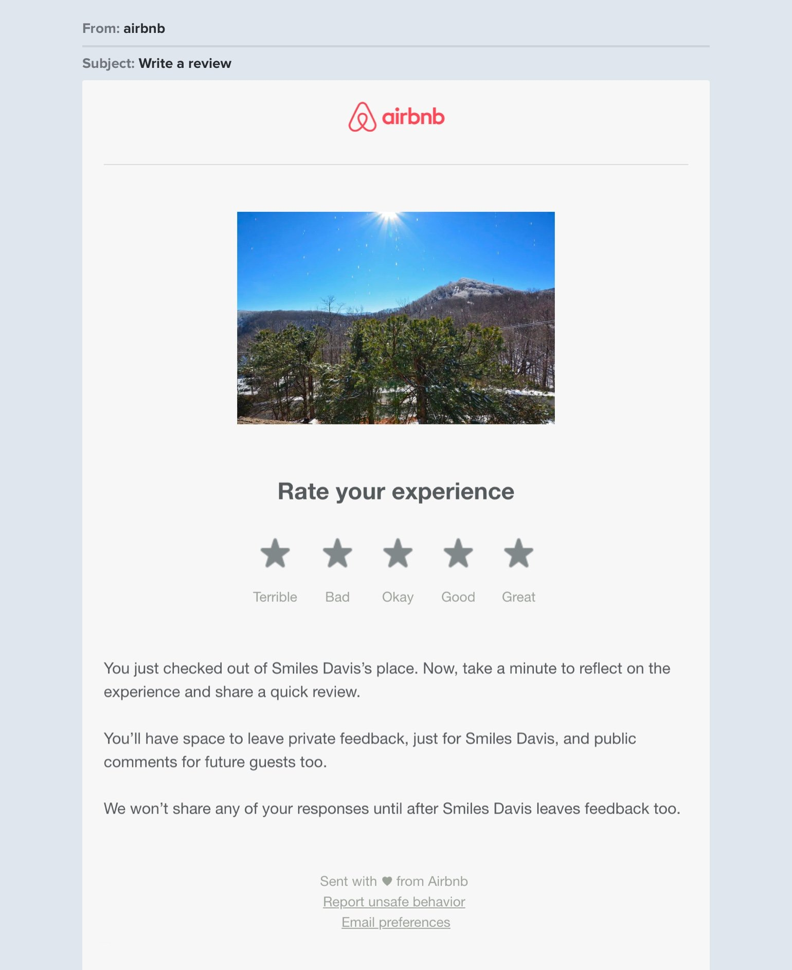 Airbnb survey newsletter example